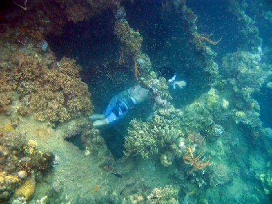 Scuba Diving in Sangat Island