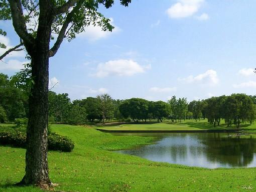 Tarlac Luisita Golf